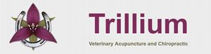TrilliumLogo
